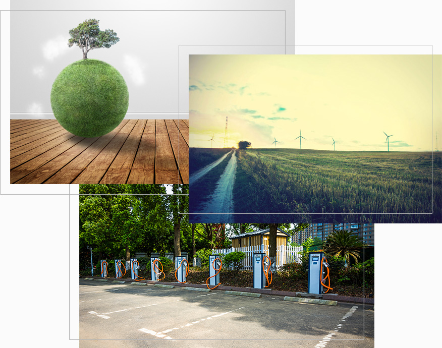 consulenza-green_collage